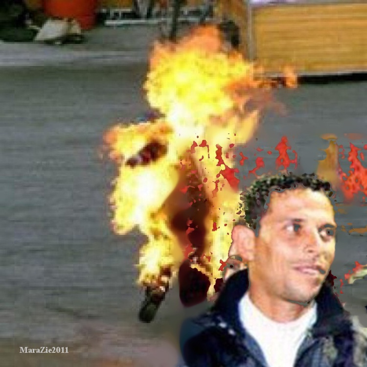 ANOTACE Tunisan Mohamed Bouazizi Arab Spring in April